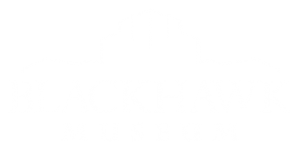 Blackhawk_Museum_2018_White